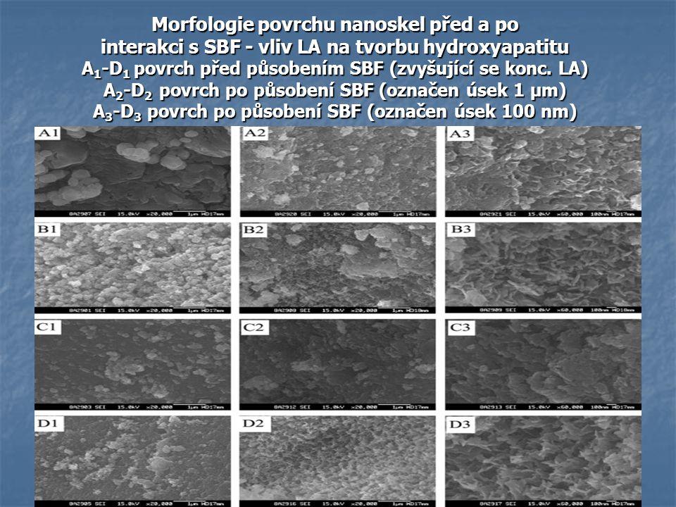 Morfologie povrchu nanoskel před a po interakci s SBF - vliv LA na tvorbu hydroxyapatitu A 1 -D 1 povrch před působením SBF (zvyšující se konc. LA) A