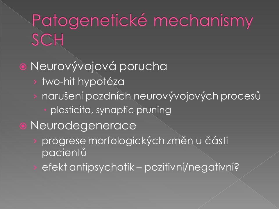  Neurovývojová porucha › two-hit hypotéza › narušení pozdních neurovývojových procesů  plasticita, synaptic pruning  Neurodegenerace › progrese mor