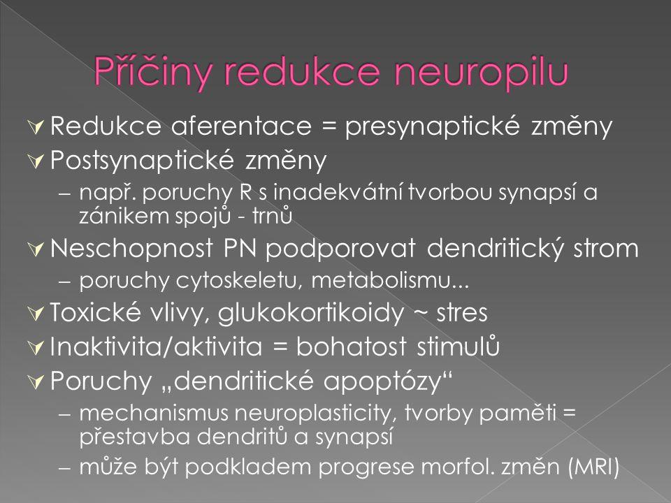  Redukce aferentace = presynaptické změny  Postsynaptické změny – např. poruchy R s inadekvátní tvorbou synapsí a zánikem spojů - trnů  Neschopnost