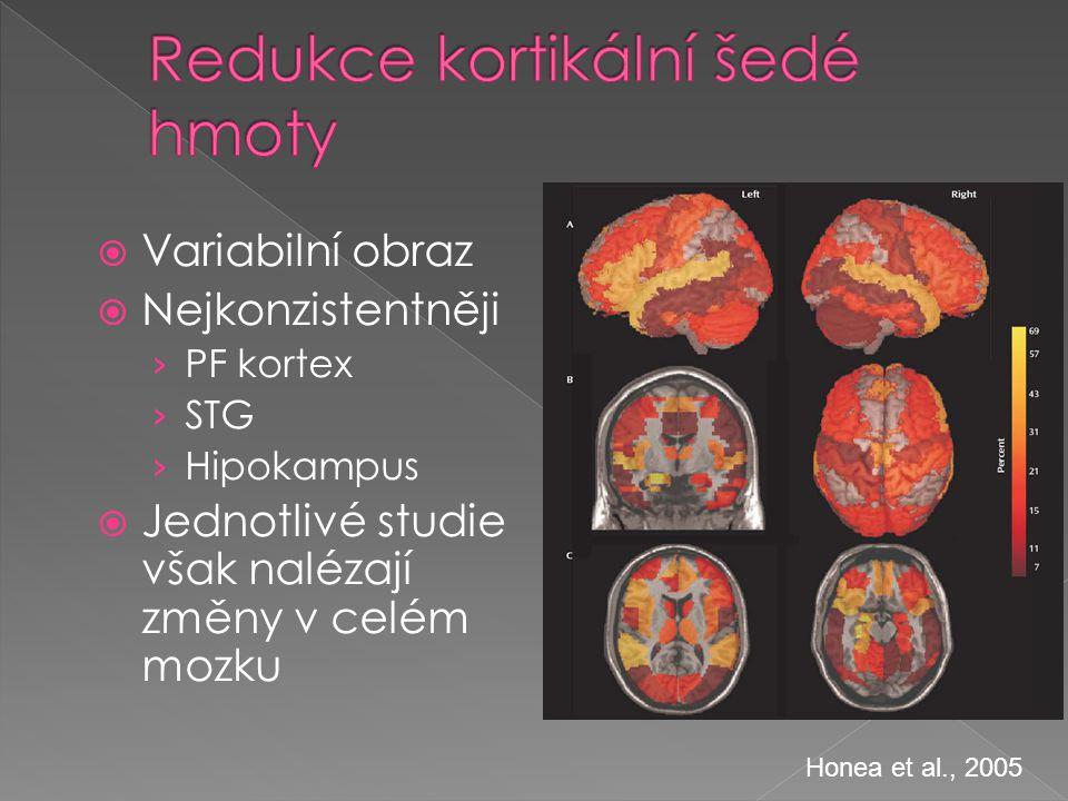  Variabilní obraz  Nejkonzistentněji › PF kortex › STG › Hipokampus  Jednotlivé studie však nalézají změny v celém mozku Honea et al., 2005