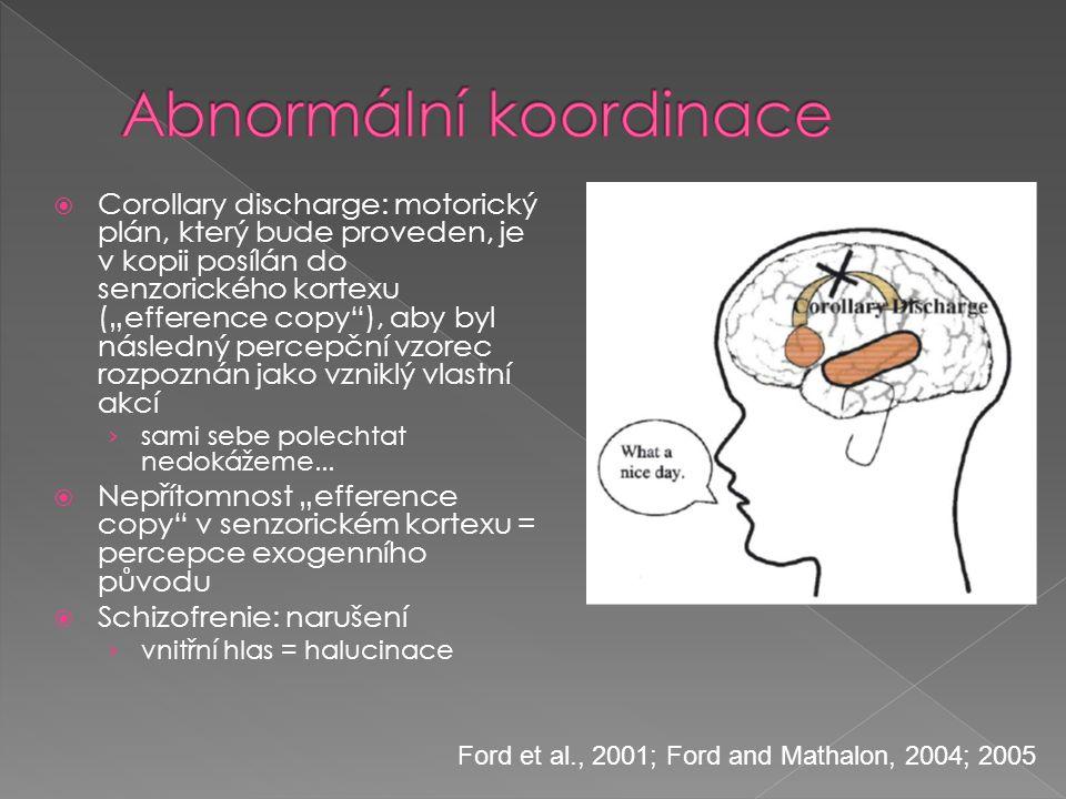 """ Corollary discharge: motorický plán, který bude proveden, je v kopii posílán do senzorického kortexu (""""efference copy""""), aby byl následný percepční"""