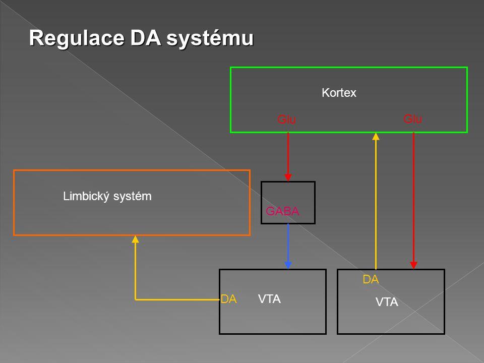 Kortex Limbický systém Glu GABA DA VTA Regulace DA systému
