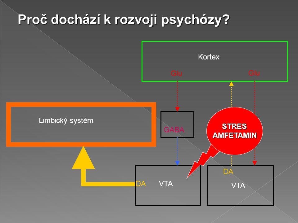 Kortex Limbický systém Glu GABA DA VTA STRESAMFETAMIN Proč dochází k rozvoji psychózy?