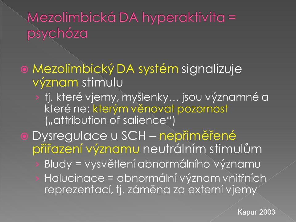 """ Mezolimbický DA systém signalizuje význam stimulu › tj. které vjemy, myšlenky… jsou významné a které ne; kterým věnovat pozornost (""""attribution of s"""