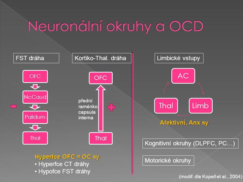 OFCNcCaudPalidumThal FST dráha přední raménko capsula interna Kortiko-Thal. dráha OFCThal ACLimbThal Limbické vstupy Kognitivní okruhy (DLPFC, PC…) Hy