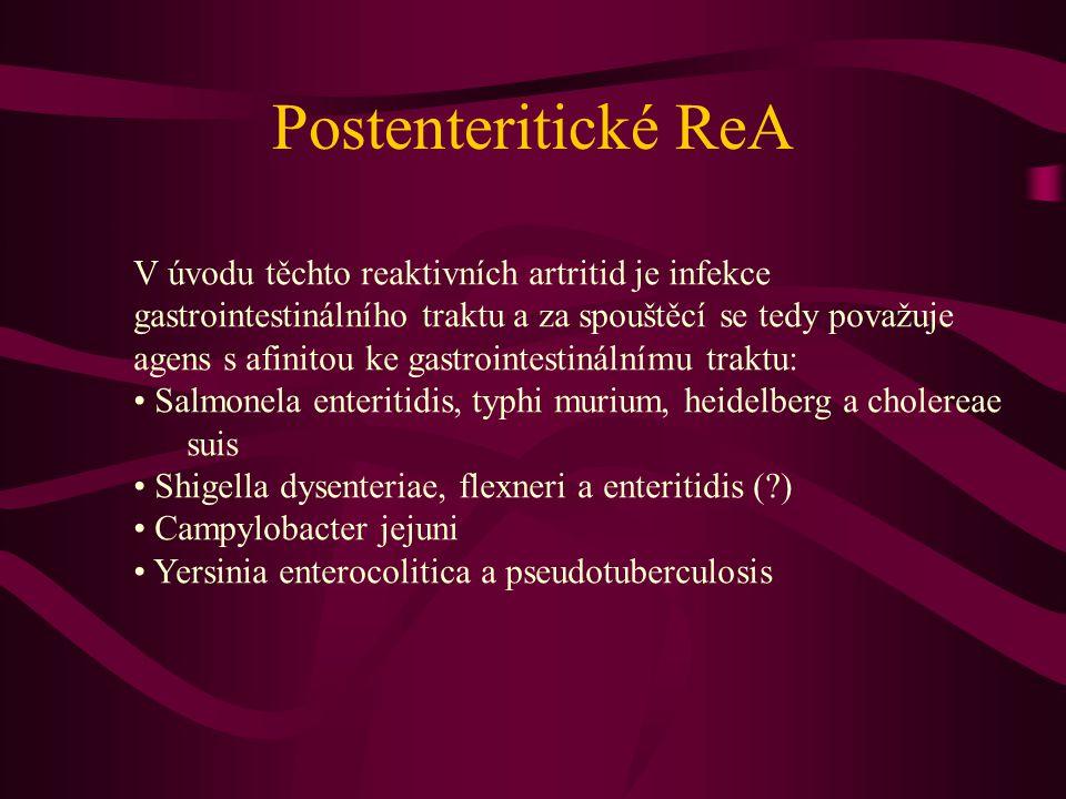 Postenteritické ReA V úvodu těchto reaktivních artritid je infekce gastrointestinálního traktu a za spouštěcí se tedy považuje agens s afinitou ke gas