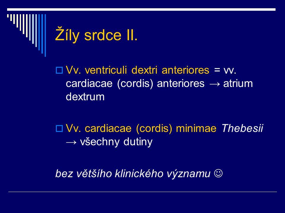 Žíly srdce II.  Vv. ventriculi dextri anteriores = vv. cardiacae (cordis) anteriores → atrium dextrum  Vv. cardiacae (cordis) minimae Thebesii → vše