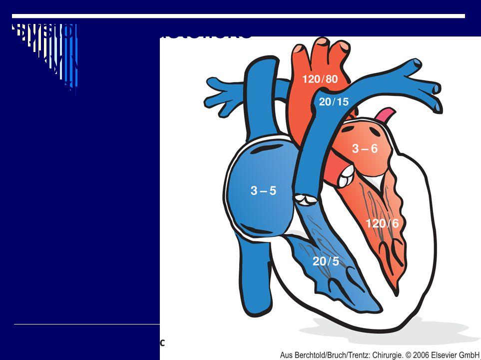 Systolické/diastolické tlaky v srdečních oddílech