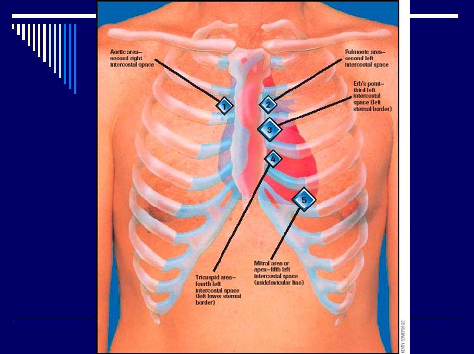 Základní klinické jednotky  Endokard: endokarditis, chlopenní vady (vrozené, získané)  Myokard: ICHS (AP, IM = záhať), myokarditis, kardiomyopatie  Perikard: perikarditis, tamponáda  Převodní soustava: arytmie  Vývojové vady: defekty sept, transpozice velkých tepen, Fallotova tri-,tetra-pentalogie, otevřená Botallova dučej, koarkatce aorty