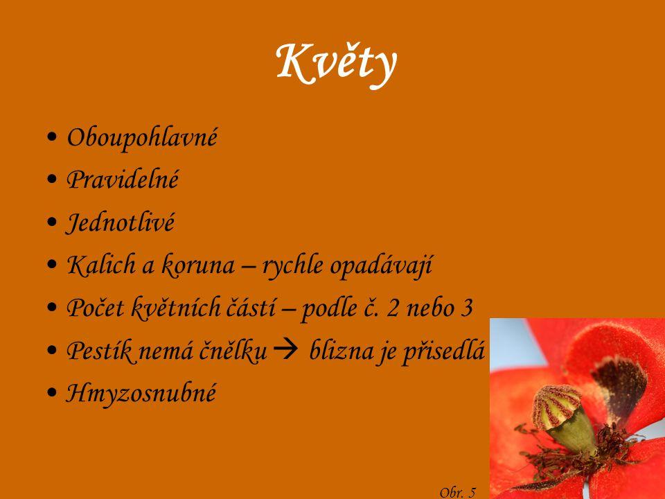 Plody Plodem je tobolka Semena obsahují velké množství oleje  využití Obr. 8 Obr. 6 Obr. 7