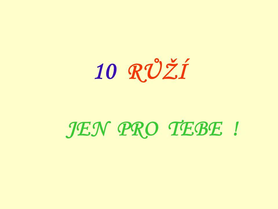 10 RŮŽÍ JEN PRO TEBE !