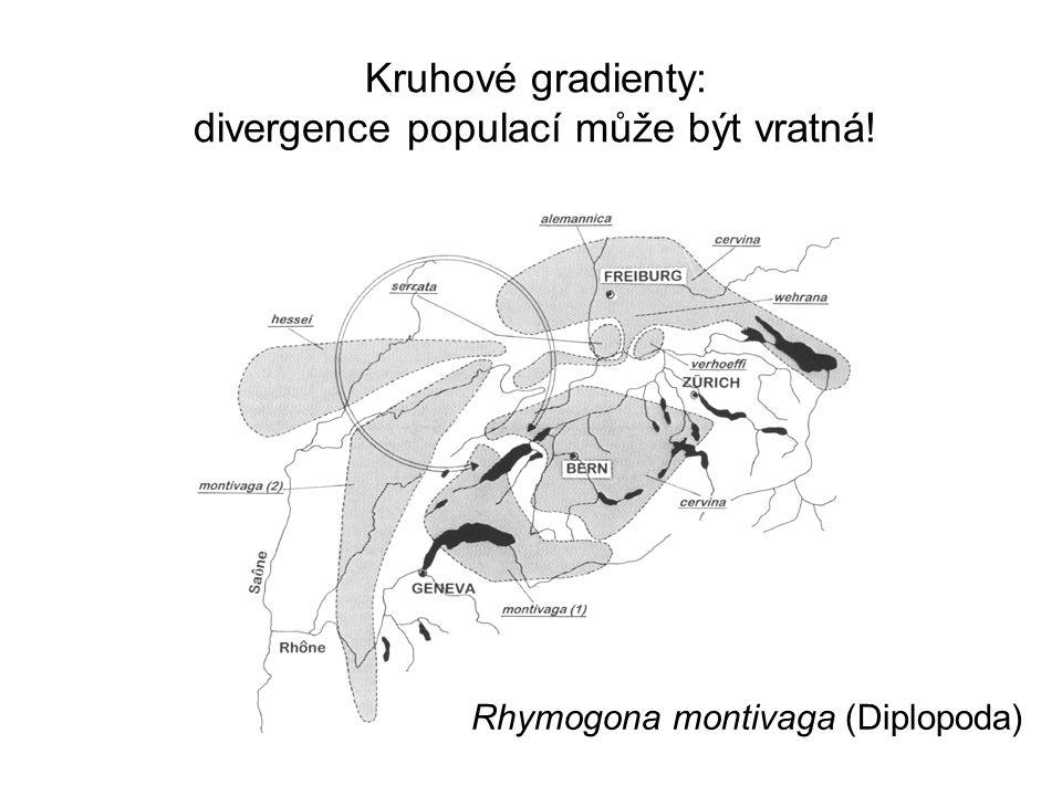 Kruhové gradienty: divergence populací může být vratná! Rhymogona montivaga (Diplopoda)