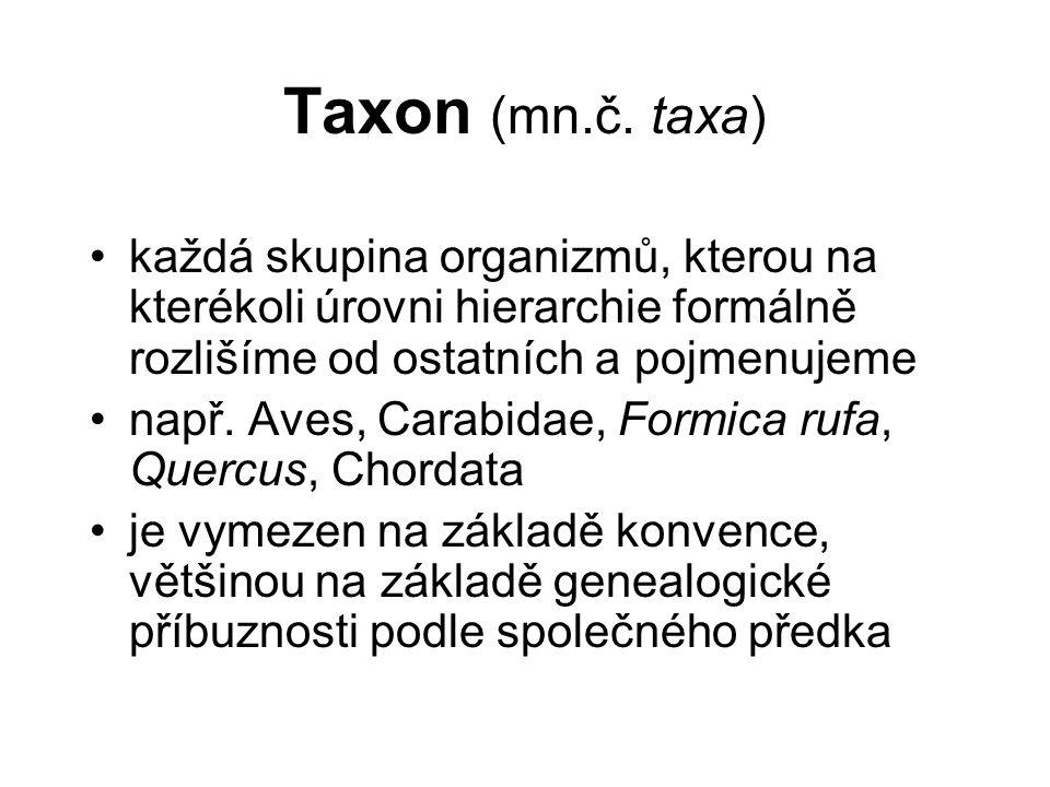 Monofyletický taxon zahrnuje všechny dceřinné taxony a jejich společného předka = klád (clade) = přirozená skupina (natural group) – odpovídá naší hypotéze o fylogenezi