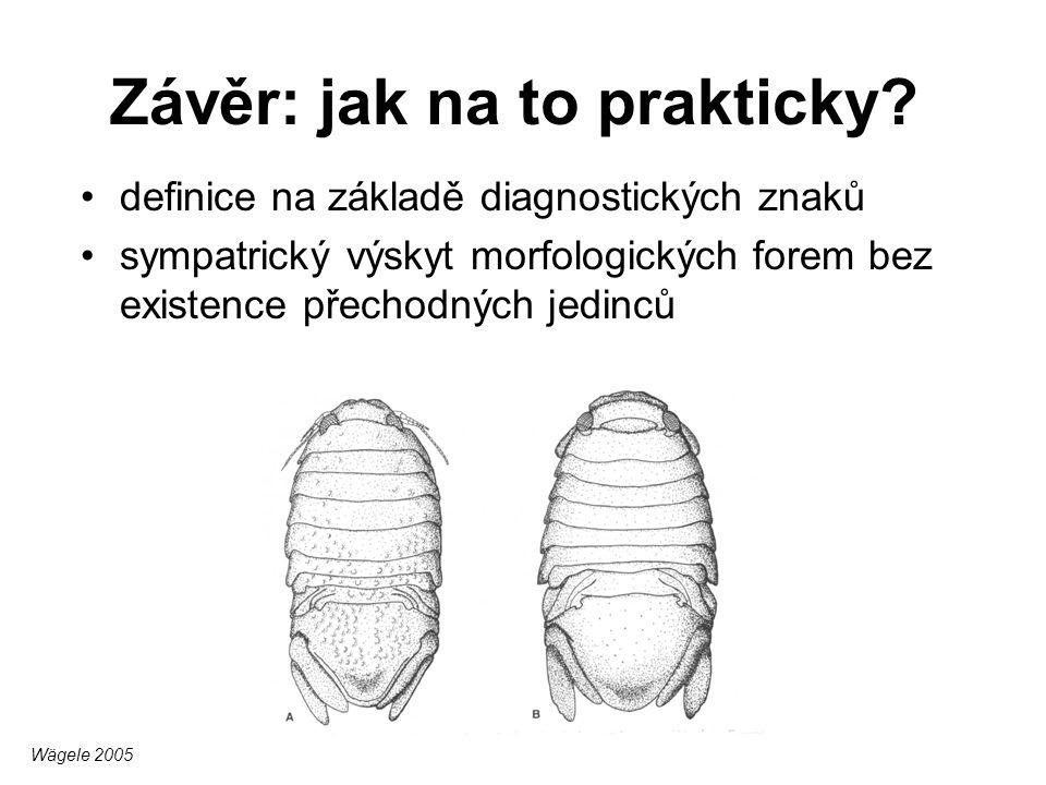 Závěr: jak na to prakticky? definice na základě diagnostických znaků sympatrický výskyt morfologických forem bez existence přechodných jedinců Wägele
