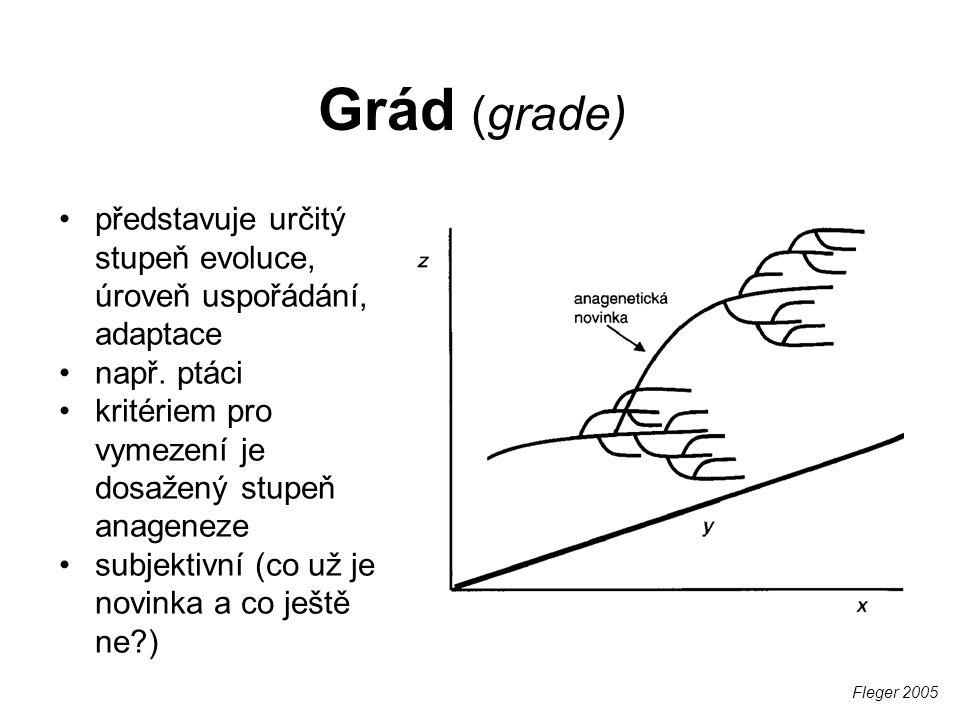 Problémy biologické koncepce (1) o druzích a RIM se můžeme vyjadřovat jen v současném čase Wägele 2005