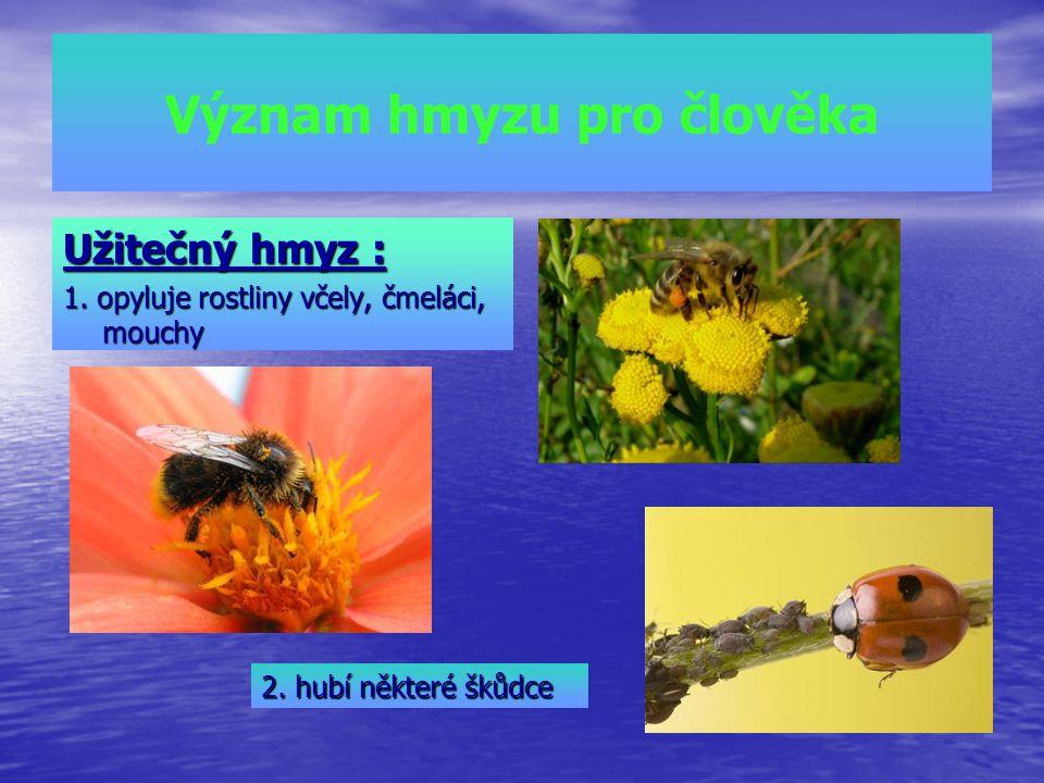 Význam hmyzu pro člověka Užitečný hmyz : 1. opyluje rostliny včely, čmeláci, mouchy 2. hubí některé škůdce