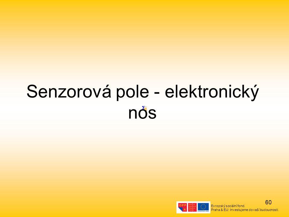 Evropský sociální fond. Praha & EU: Investujeme do vaší budoucnosti. 60 Senzorová pole - elektronický nos