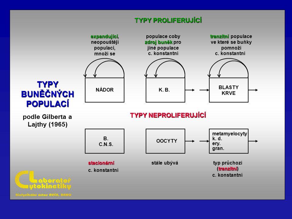 TYPY PROLIFERUJÍCÍ TYPY NEPROLIFERUJÍCÍ TYPY BUNĚČNÝCH POPULACÍ podle Gilberta a Lajthy (1965) B. C.N.S. NÁDOR expandující expandující, neopouštějí po