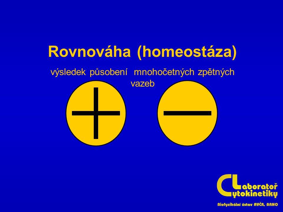 Rovnováha (homeostáza) výsledek působení mnohočetných zpětných vazeb