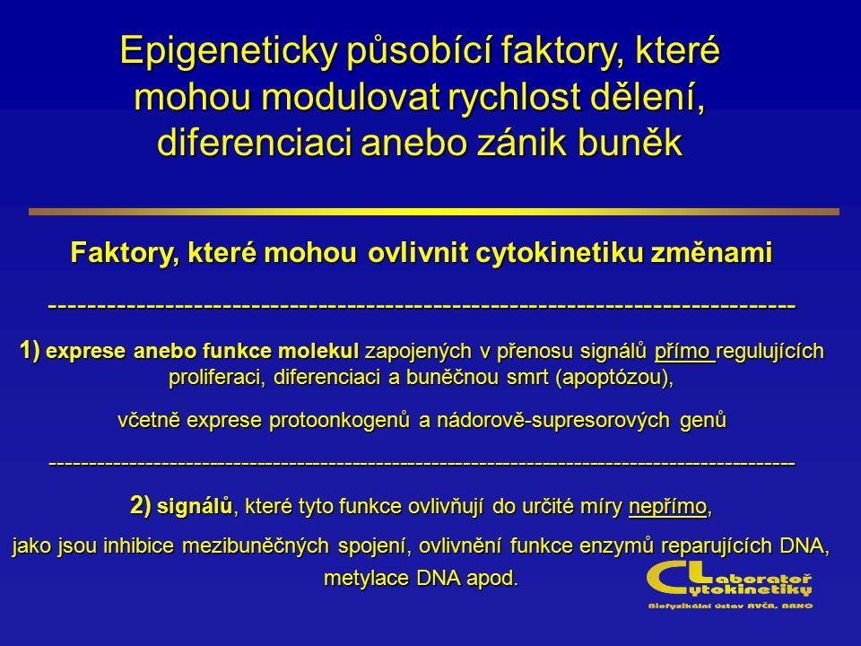 Epigeneticky působící faktory, které mohou modulovat rychlost dělení, diferenciaci anebo zánik buněk Faktory, které mohou ovlivnit cytokinetiku změnam