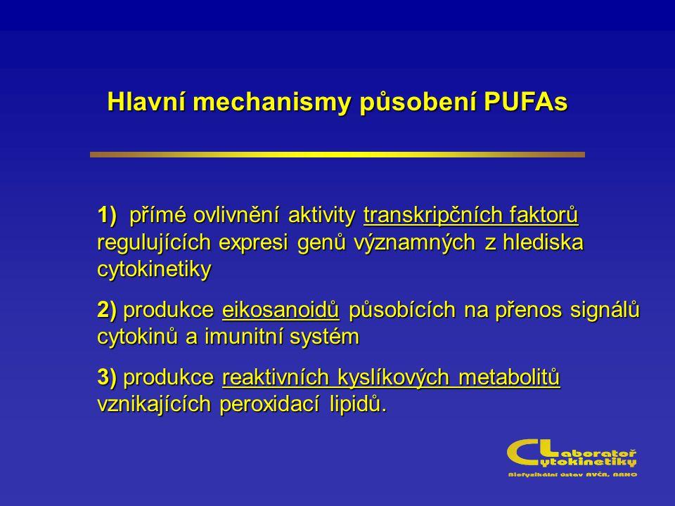 Hlavní mechanismy působení PUFAs 1) přímé ovlivnění aktivity transkripčních faktorů regulujících expresi genů významných z hlediska cytokinetiky 2) pr