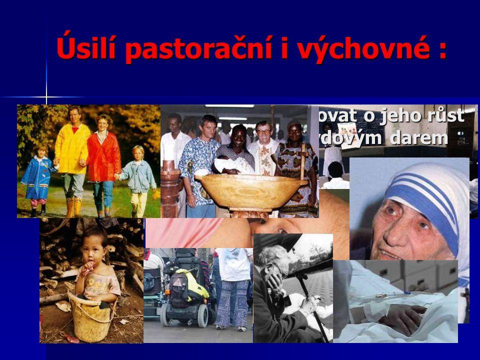 Úsilí pastorační i výchovné : chránit život tam, kde je poškozován.
