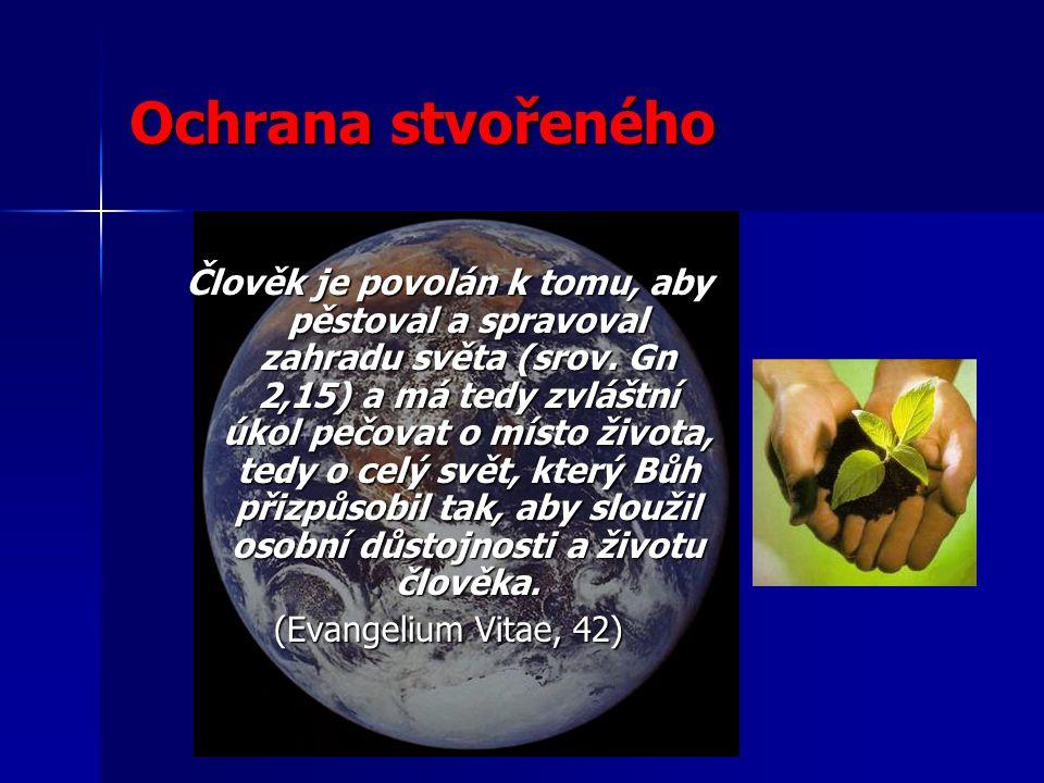 Člověk je povolán k tomu, aby pěstoval a spravoval zahradu světa (srov.