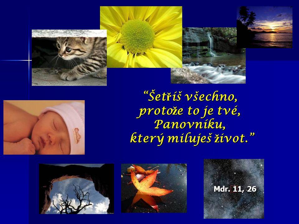 """Mdr. 11, 26 """"Šet ř íš všechno, proto ž e to je tvé, Panovníku, který miluješ ž ivot."""" který miluješ ž ivot."""""""