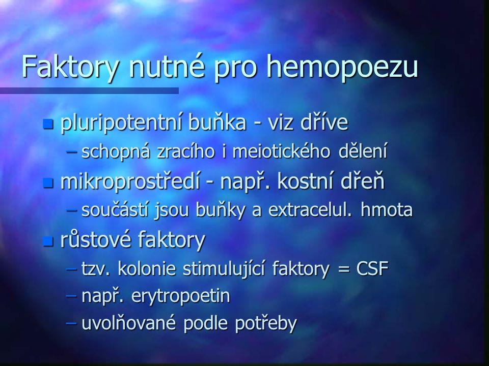 Faktory nutné pro hemopoezu n pluripotentní buňka - viz dříve –schopná zracího i meiotického dělení n mikroprostředí - např. kostní dřeň –součástí jso
