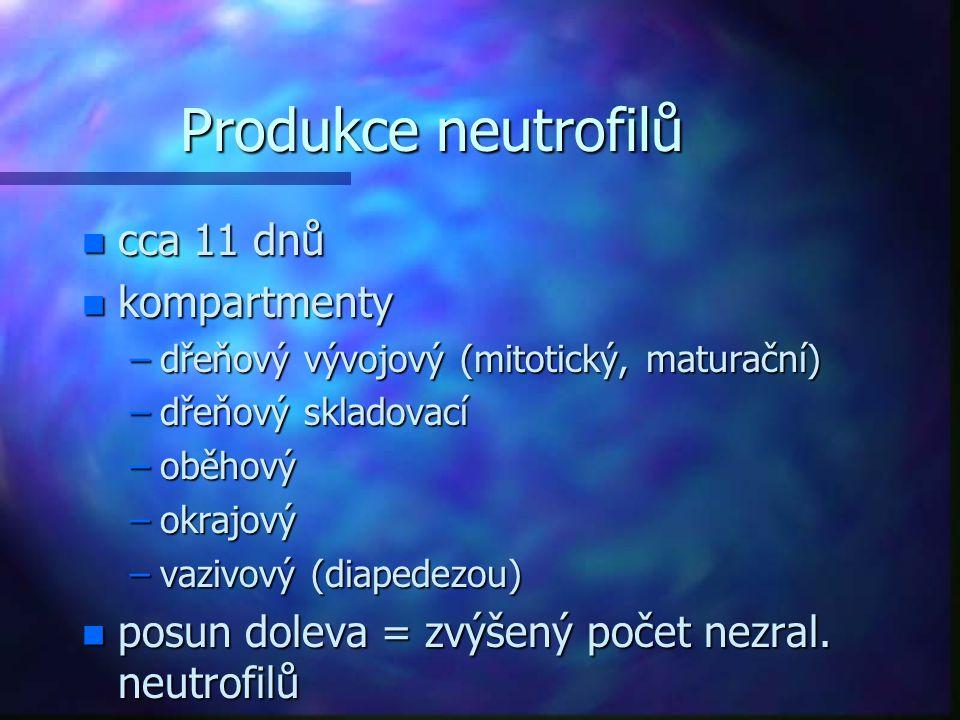 Produkce neutrofilů n cca 11 dnů n kompartmenty –dřeňový vývojový (mitotický, maturační) –dřeňový skladovací –oběhový –okrajový –vazivový (diapedezou)