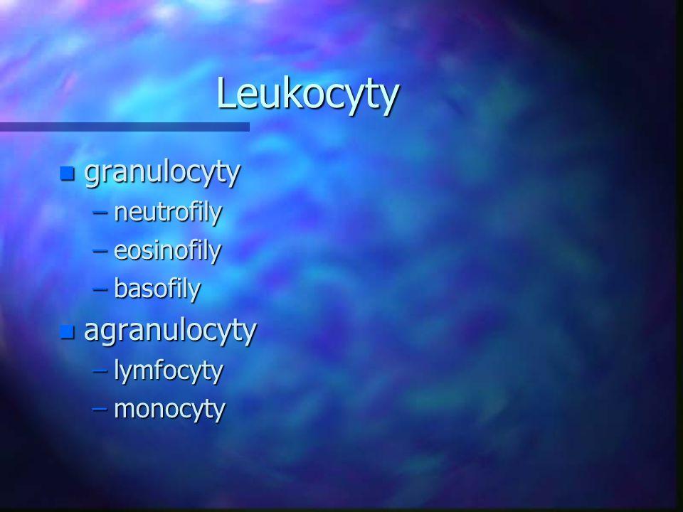 Leukocyty n granulocyty –neutrofily –eosinofily –basofily n agranulocyty –lymfocyty –monocyty