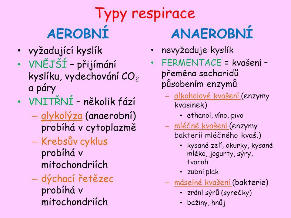 Typy respirace AEROBNÍ vyžadující kyslík VNĚJŠÍ – přijímání kyslíku, vydechování CO 2 a páry VNITŘNÍ – několik fází – glykolýza (anaerobní) probíhá v