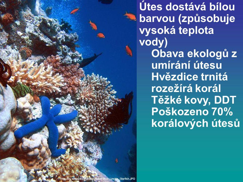 Útes dostává bílou barvou (způsobuje vysoká teplota vody) Obava ekologů z umírání útesu Hvězdice trnitá rozežírá korál Těžké kovy, DDT Poškozeno 70% korálových útesů http://cs.wikipedia.org/wiki/Soubor:Blue_Linckia_Starfish.JPG