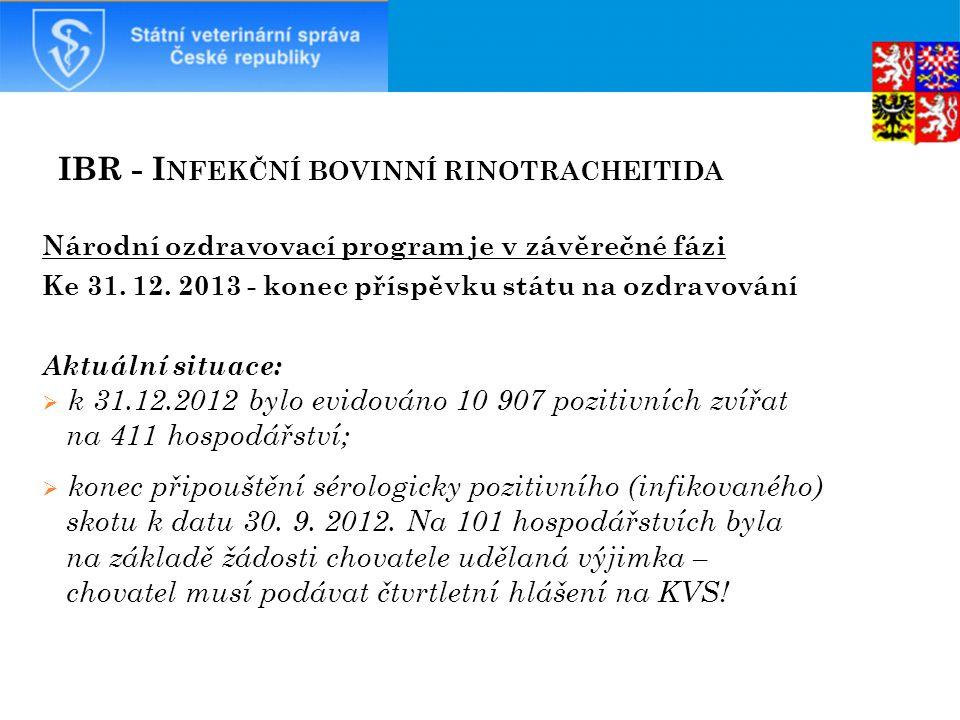 IBR - I NFEKČNÍ BOVINNÍ RINOTRACHEITIDA Národní ozdravovací program je v závěrečné fázi Ke 31.