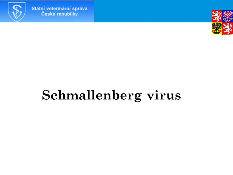 Schmallenberg virus 21