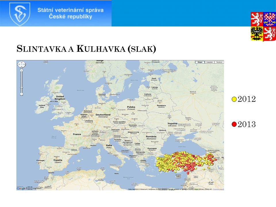 S LINTAVKA A K ULHAVKA ( SLAK ) 2012 2013 40