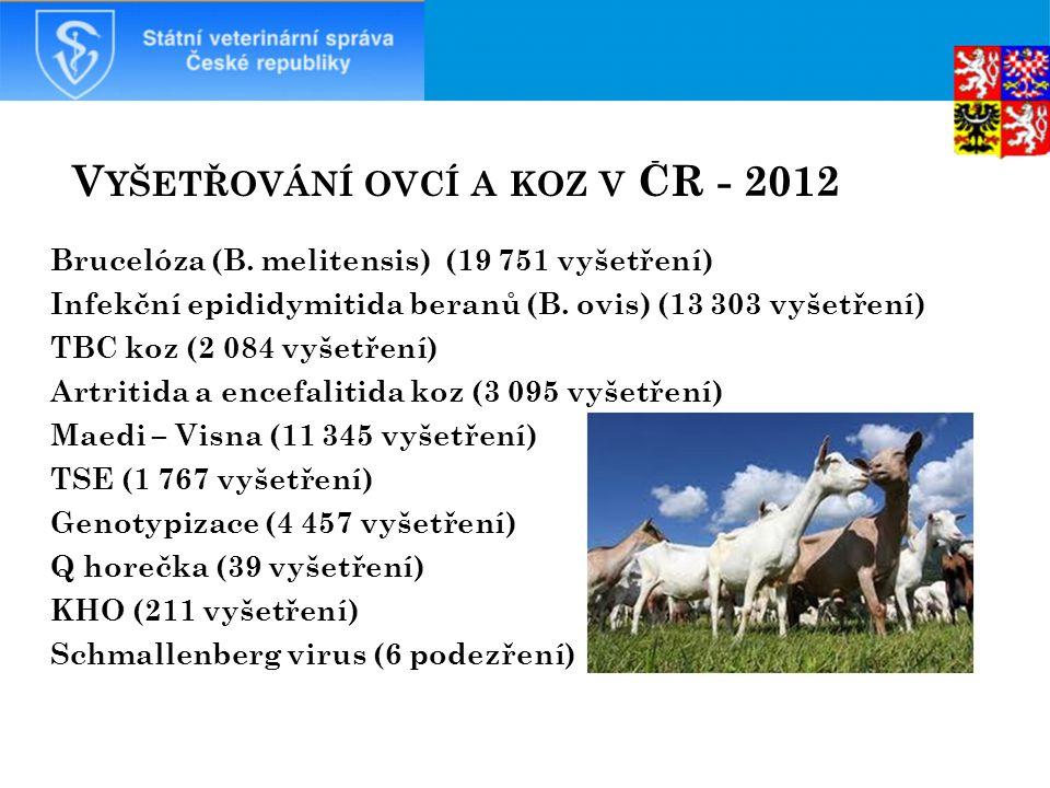 V YŠETŘOVÁNÍ OVCÍ A KOZ V ČR - 2012 Brucelóza (B.