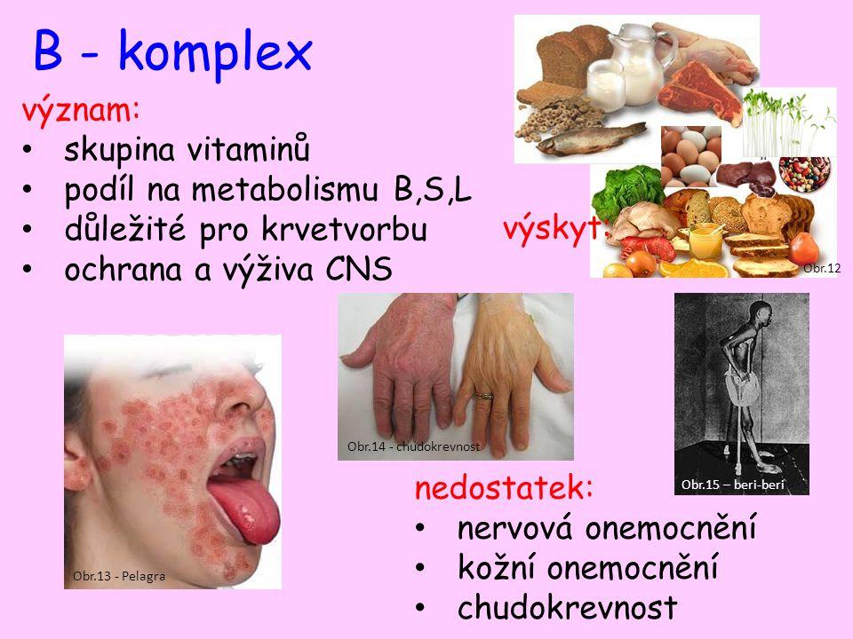 B - komplex význam: skupina vitaminů podíl na metabolismu B,S,L důležité pro krvetvorbu ochrana a výživa CNS nedostatek: nervová onemocnění kožní onemocnění chudokrevnost Obr.12 výskyt: Obr.13 - Pelagra Obr.14 - chudokrevnost Obr.15 – beri-beri