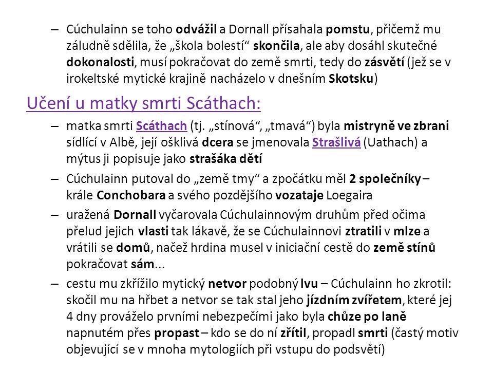 """– Cúchulainn se toho odvážil a Dornall přísahala pomstu, přičemž mu záludně sdělila, že """"škola bolestí"""" skončila, ale aby dosáhl skutečné dokonalosti,"""