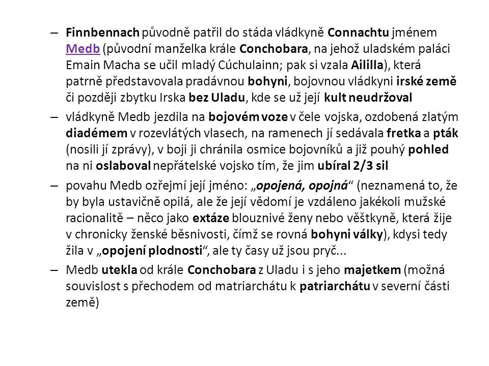 – Finnbennach původně patřil do stáda vládkyně Connachtu jménem Medb (původní manželka krále Conchobara, na jehož uladském paláci Emain Macha se učil