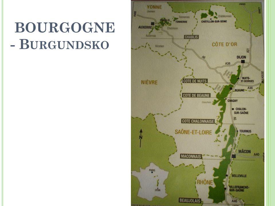 BOURGOGNE - B URGUNDSKO