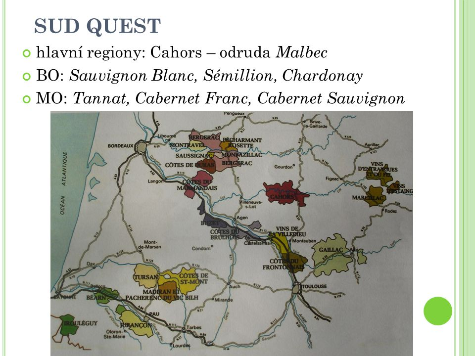 SUD QUEST hlavní regiony: Cahors – odruda Malbec BO: Sauvignon Blanc, Sémillion, Chardonay MO: Tannat, Cabernet Franc, Cabernet Sauvignon