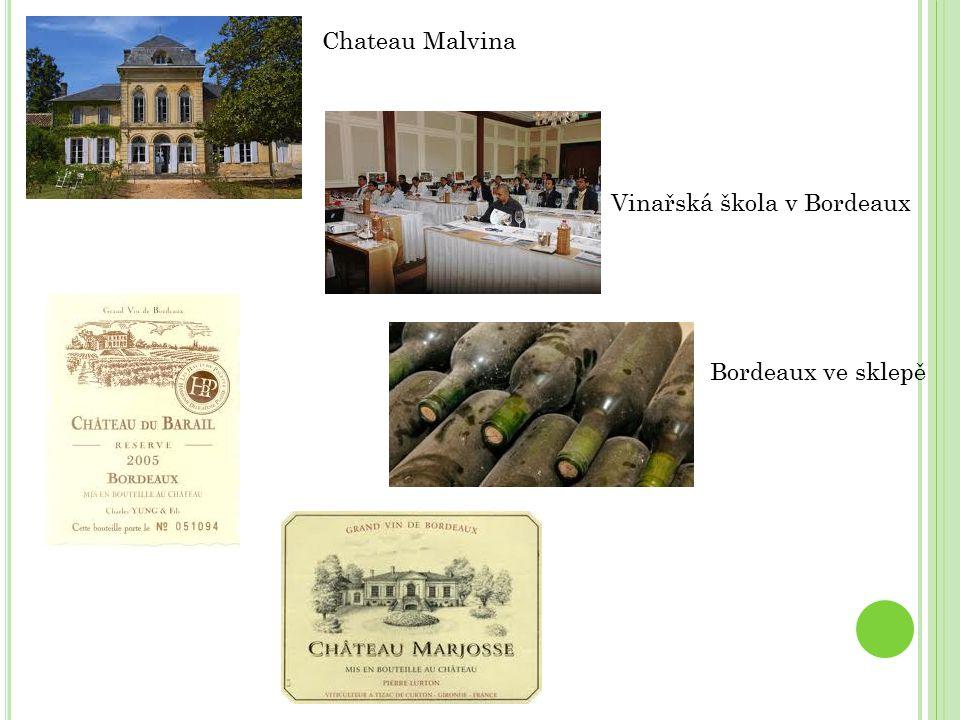 Chateau Malvina Vinařská škola v Bordeaux Bordeaux ve sklepě