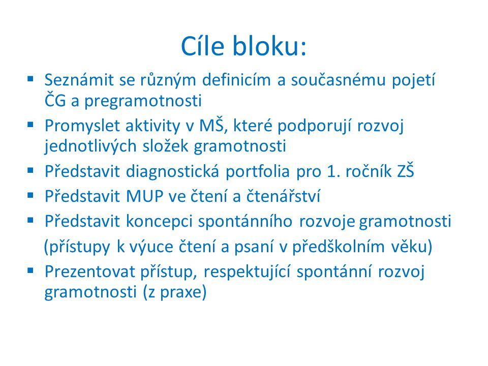 Doporučená literatura (2): VYKOUKALOVÁ Věra a WILDOVÁ, Radka (2013).