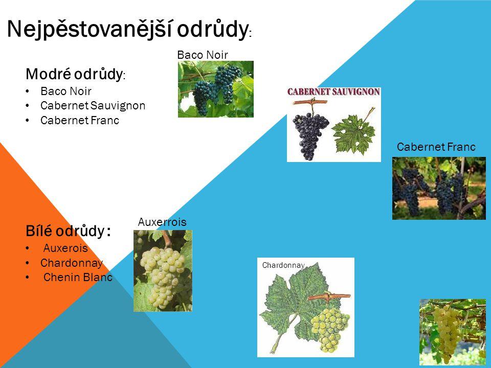 Modré odrůdy : Baco Noir Cabernet Sauvignon Cabernet Franc Bílé odrůdy : Auxerois Chardonnay Chenin Blanc Nejpěstovanější odrůdy : Chardonnay Cabernet