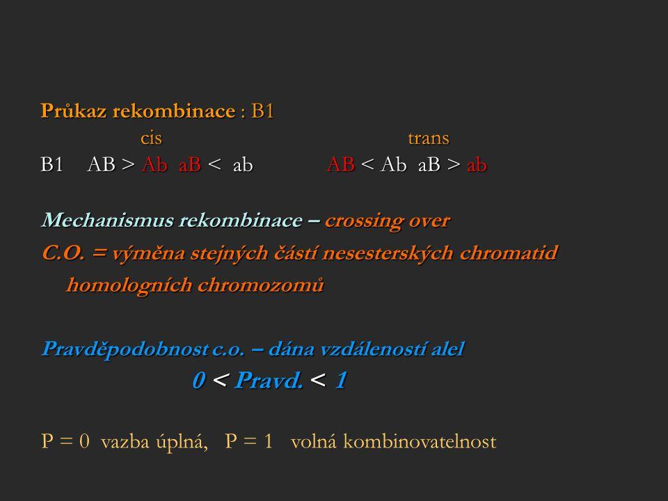 Průkaz rekombinace : B1 cis trans cis trans B1 AB > Ab aB ab Mechanismus rekombinace – crossing over C.O. = výměna stejných částí nesesterských chroma