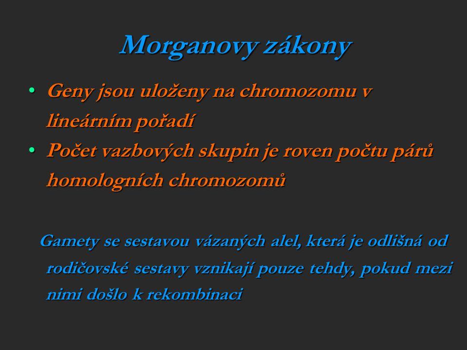 Morganovy zákony Geny jsou uloženy na chromozomu v lineárním pořadíGeny jsou uloženy na chromozomu v lineárním pořadí Počet vazbových skupin je roven