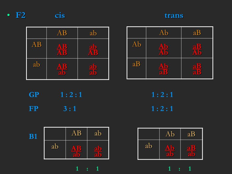 F2 cis transF2 cis trans ABab ABABABabAB abABababab AbaBAbAbAbaBAb aBAbaBaBaB GP 1 : 2 : 1 1 : 2 : 1 FP 3 : 1 1 : 2 : 1 B1ABababABababab AbaBabAbabaBa