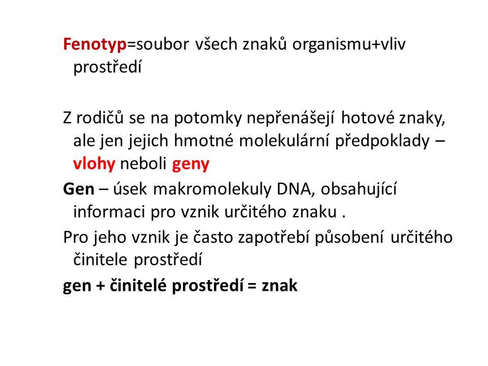 Fenotyp=soubor všech znaků organismu+vliv prostředí Z rodičů se na potomky nepřenášejí hotové znaky, ale jen jejich hmotné molekulární předpoklady – v