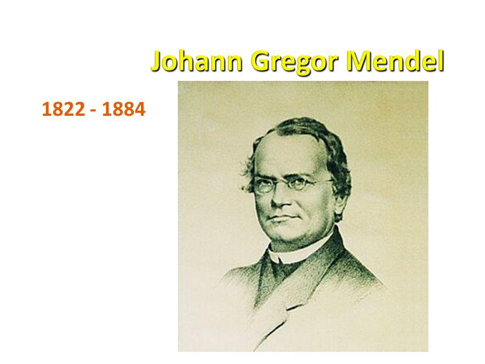 1822 - 1884